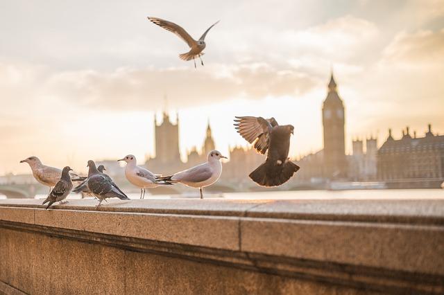 Top 10 látnivaló Londonban
