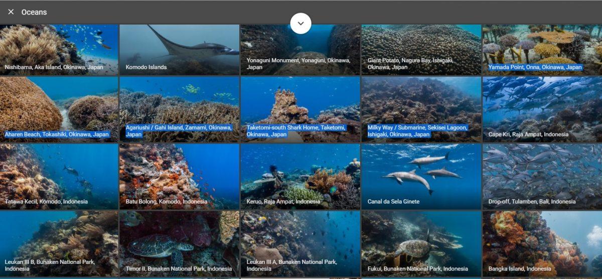 google ocean4