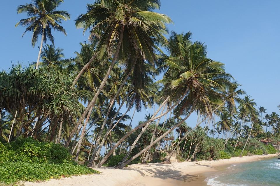 1 hét nyaralás Srí Lankán! Prémium légitársasággal és 4 csillagos óceánparti szállással: 274.000 Ft-ért!