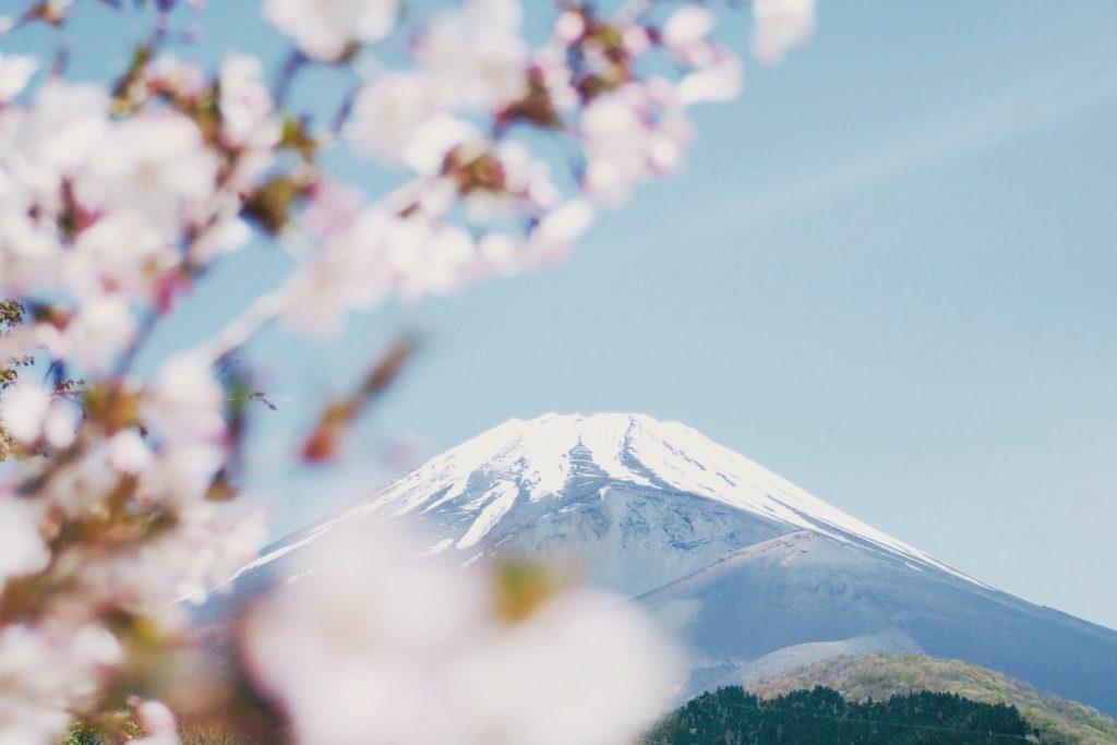 Életre szóló élmény: Látogass Japánba a cseresznyevirágzás idején remek áron!