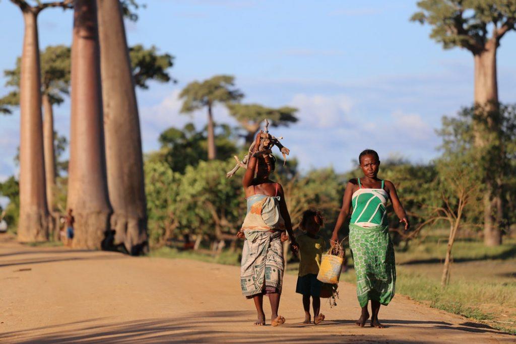 10 nap Madagaszkár tökéletes átszállási idővel, szállással 252.835 Ft-ért februárban!