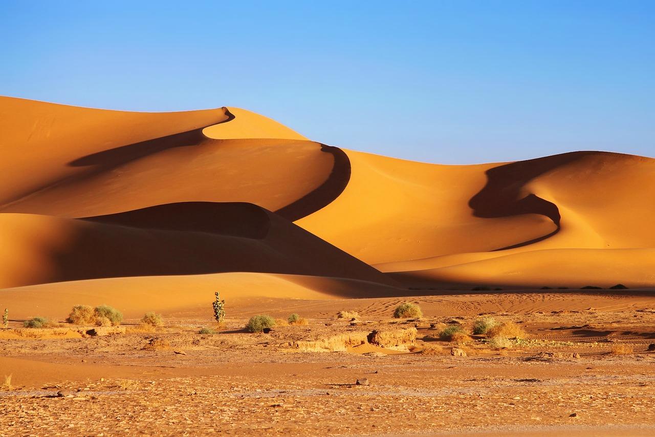 legjobb helyen szabad algéria találkozó)