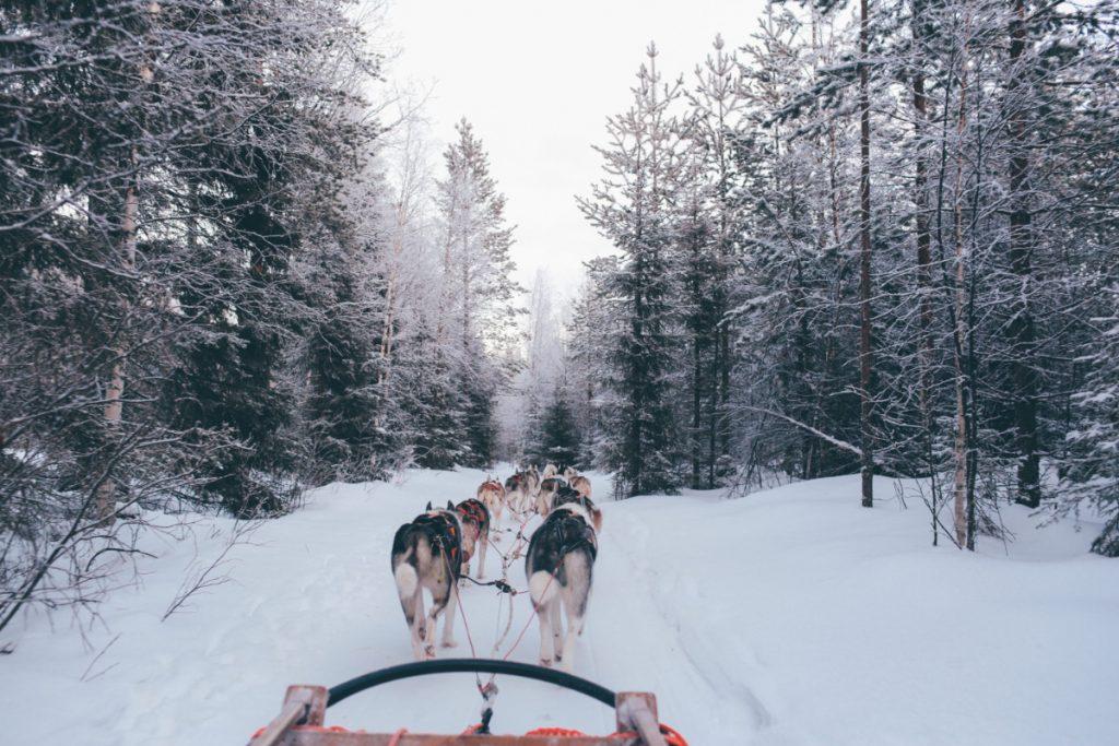 Ajándékozzatok élményt Karácsonyra: egy hét Lappföld decemberben 124.700 Ft!