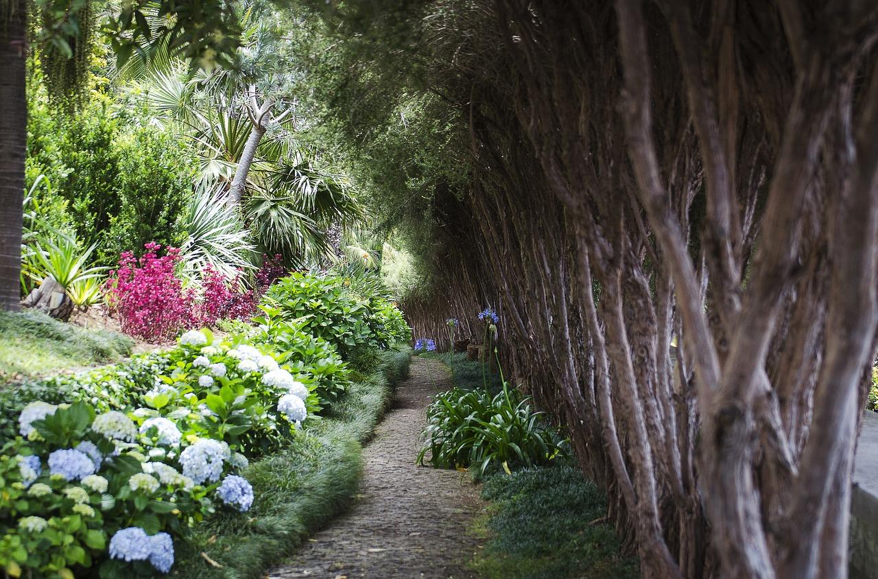 Top 10 látnivaló Madeirán