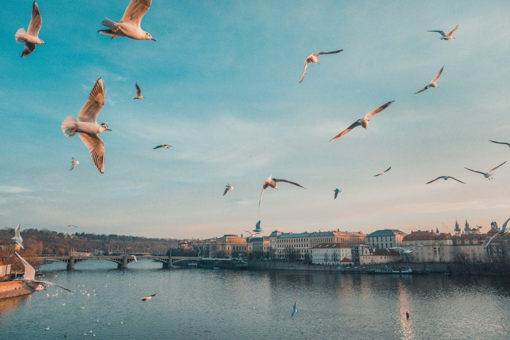 3 nap Prága szállással, repülővel 16.015 Ft-ért!