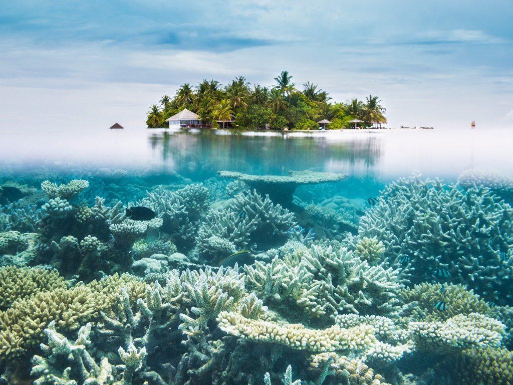 12 nap Maldív-szigetek Karácsony előtt budapesti indulással, Qatarral, szállással 256.500 Ft-ért!