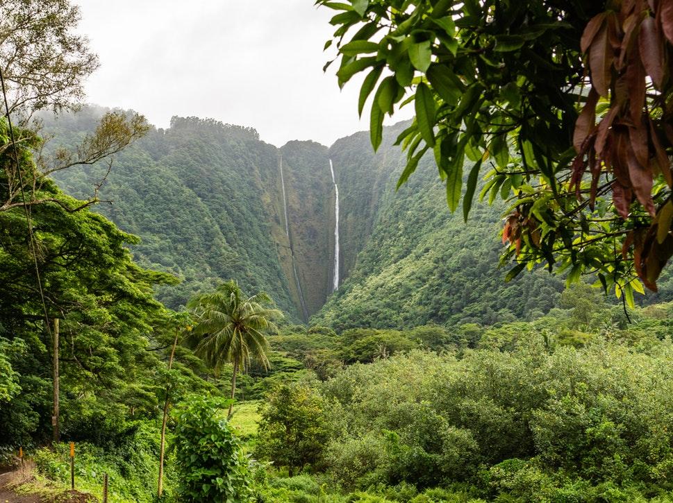 Retúr repülőjegy Hawaii-ra remek áron 192.800 Ft-ért!