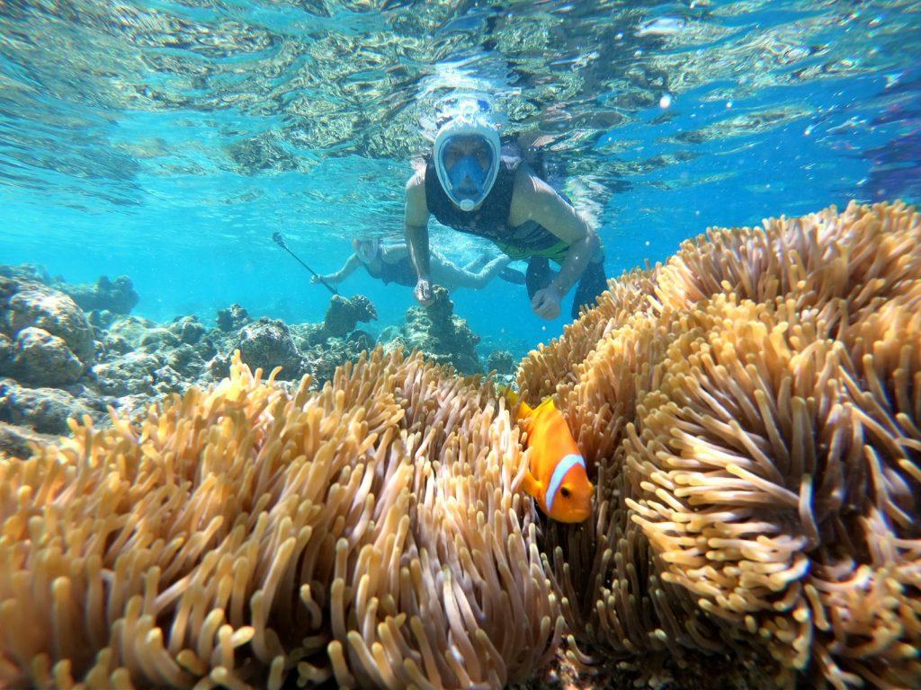 Bakancslistád: 8 nap Maldív-szigetek 3 csillagos hotellel 218.000 Ft-ért!