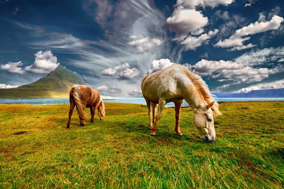 Halomban állnak a retúr repülőjegyek Izlandra 25.980 Ft-ért!
