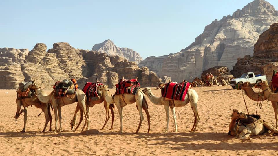 Egy hét Amman, Jordánia szállással és repülővel 59.500 Ft-ért! Vár a Vörös-tenger, Holt-tenger, Rum vádi, Petra!