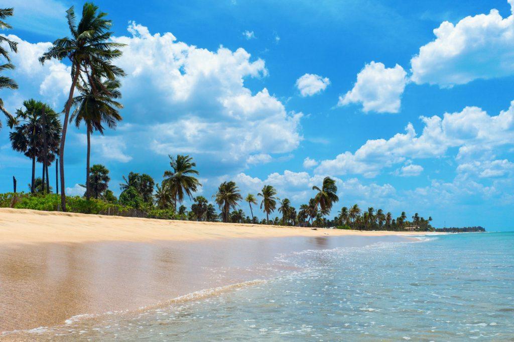 11 nap Srí Lankán prémium légitársasággal (és remek átszállási idővel), feladott poggyásszal, 4 csillagos óceánparti szállással 279.900 Ft-ért!