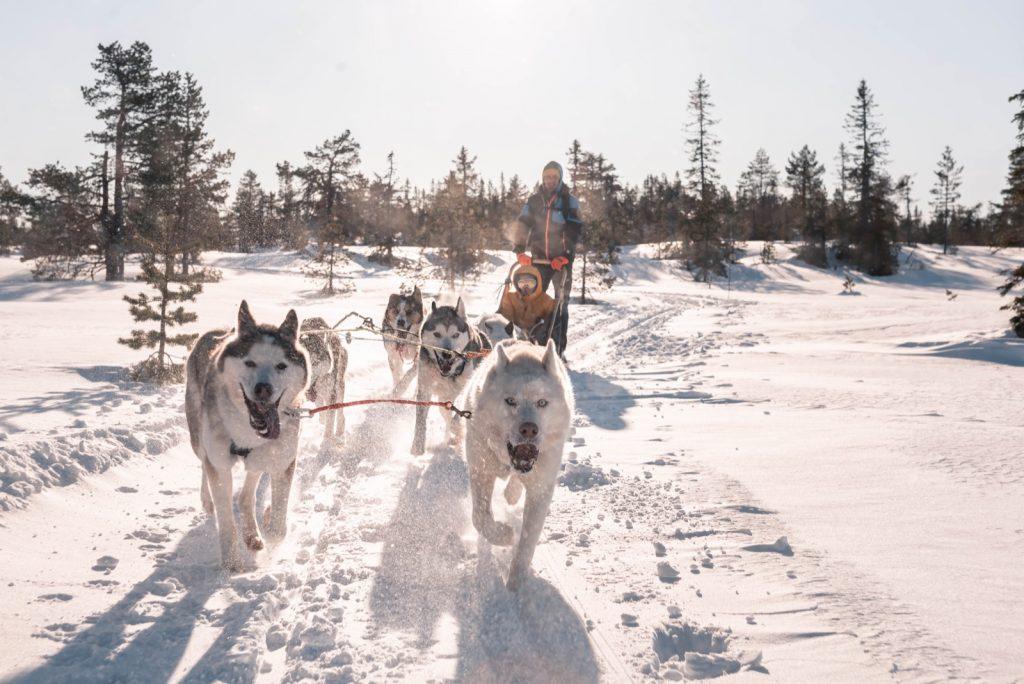 6 nap Norvégia, Lillehammer 94.350 Ft-ért! Síparadicsom, husky szánozás, jéghotel!