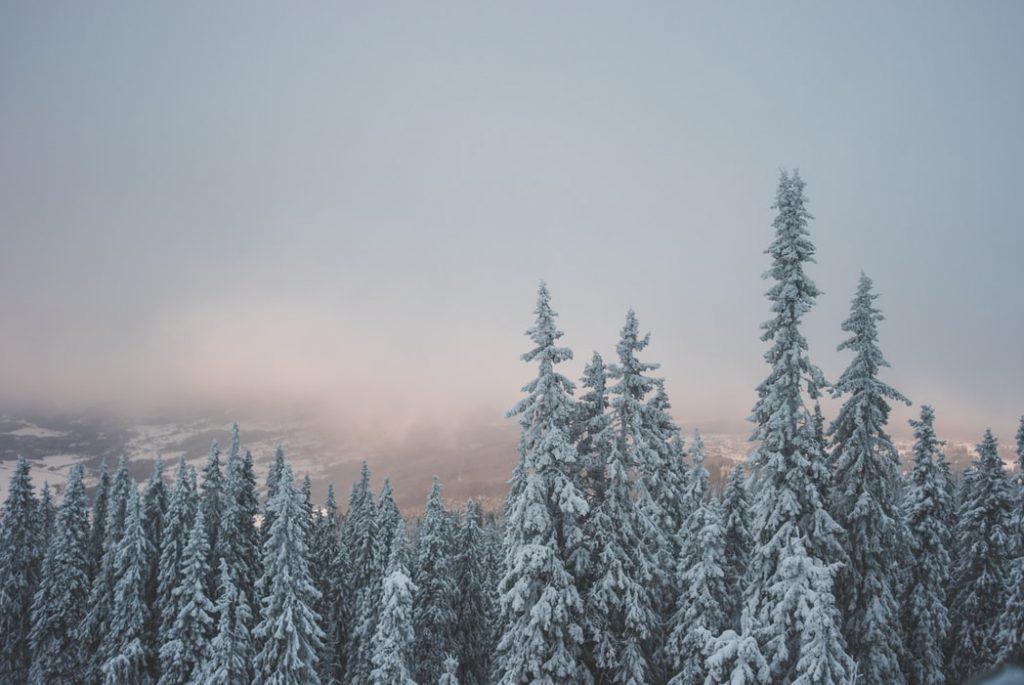 6 nap Norvégia, Lillehammer 93.380 Ft-ért! Síparadicsom, husky szánozás, jéghotel!