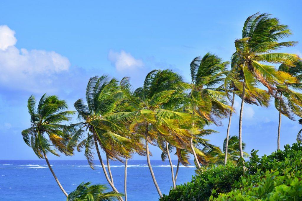 Gyönyörű sziget: 8 napos Barbados szállással és repülővel 239.750 Ft-ért!