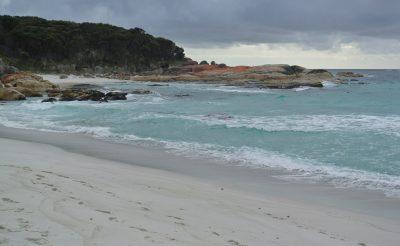 108-117. nap 10.rész: Tasmania leggyönyörűbb tengerpartjai