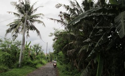 160. nap: Irány Bali!