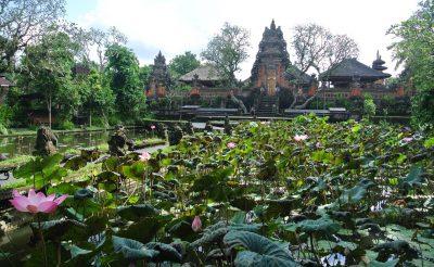 167. nap: Nem akar mindenki átvágni Balin