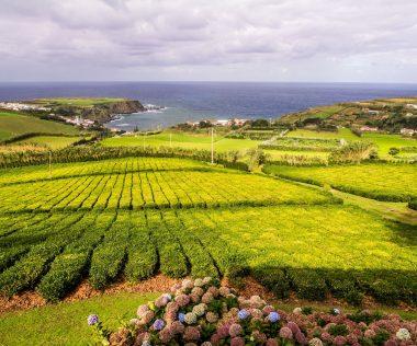 Ezt látnod kell: 9 nap Azori-szigetek szállással és repülővel 77.450 Ft-ért!