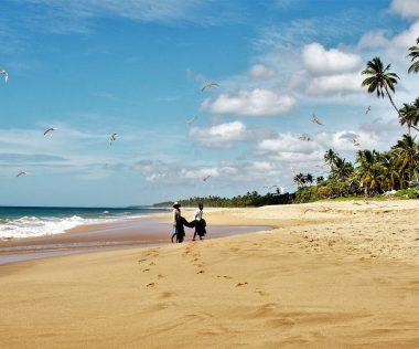 1 hét Srí Lankán prémium légitársasággal, négycsillagos szállodával 258.600 Ft-ért!