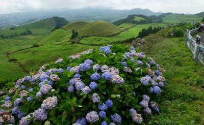 Utazz ingyen az Azori-szigetek között!