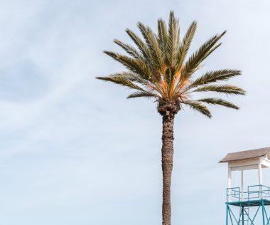 8 napos nyaralás Cipruson repülővel és szállással 46700 Ft-ért!