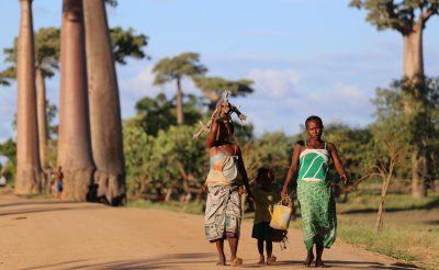 11 nap Madagaszkár szállással és repülővel 267.000 Ft-ért!