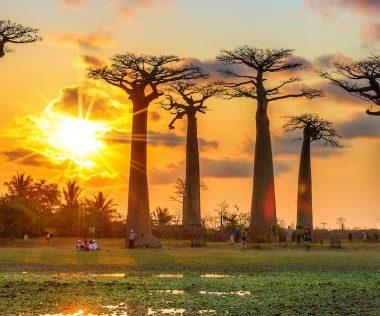 EGZOTIKUM: 9 nap Madagaszkár bécsi indulással szállással 191.306 Ft-ért!
