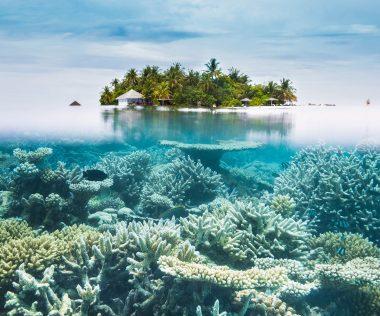 Irány a Paradicsom: 9 nap Maldív-szigetek hihetetlen áron!
