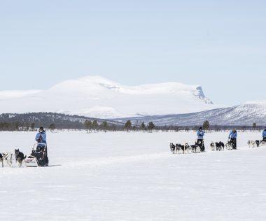 Két magyar induló az idei Fjällräven Polaron, a kutyaszános sarkvidéki túrán!