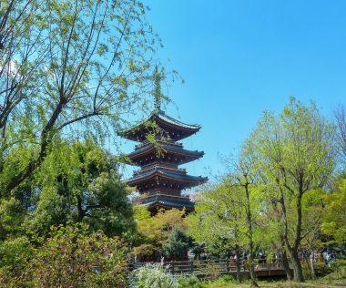 10 nap Japán, Tokió, 4 csillagos szállással és repjeggyel: 286.650 Ft-ért!