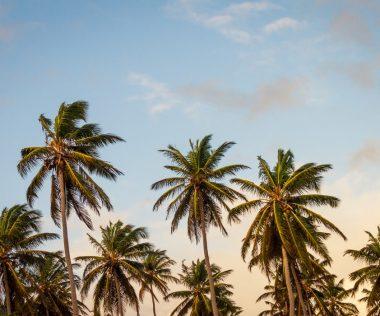 10 napos álomutazás Thaiföldre, Phuketre szállással és repülővel 205.780 Ft-ért!