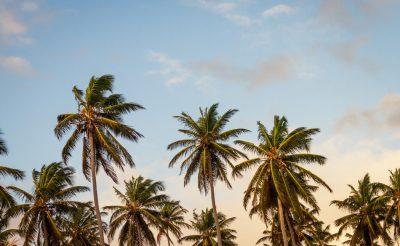 Nagyon vártuk már: karantén nélkül utazhatunk július 1-től Phuketre