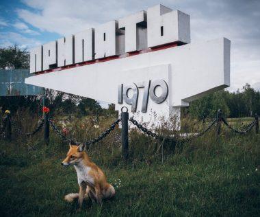 Egy hét Ukrajna, Kijev szállással és repülővel 37.000 Ft! Látogass el Csernobilba is!