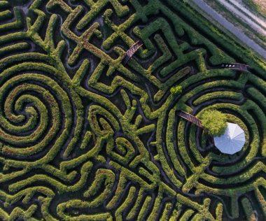 Pusztán egy piknik – Európa legnagyobb sövénylabirintusánál