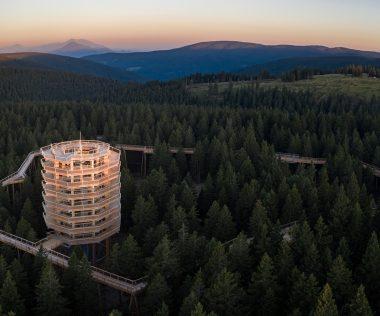 Séta a fák fölött – új lombkoronasétány Szlovéniában