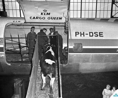 100 éves a KLM Holland Királyi Légitársaság: a múlt, a jelen és a jövő légitársasága