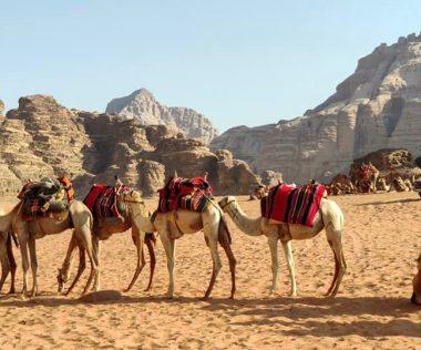 Egy hét Amman, Jordánia szállással és repülővel 34.500 Ft-ért! Vár a Vörös-tenger, Holt-tenger, Rum vádi, Petra!