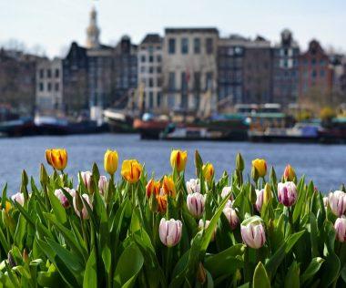 Budapest – Amszterdam retúr jegy márciusban 17.900 Ft-ért!