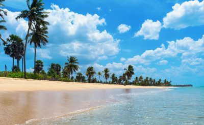 10 nap Srí Lanka, Colombo, 4 csillagos hotellel és repjeggyel: 223.500 Ft-ért!