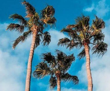 Egy hét Kanári-szigetek, Gran Canaria decemberben budapesti indulással, lemondható szállással