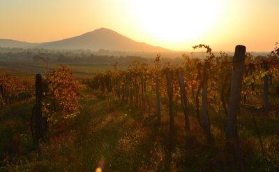 Szakadj ki a szürke hétköznapokból: természetközeli őszi kirándulóhelyek