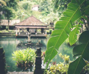Breaking: Idén nem fogad Bali külföldi turistákat!