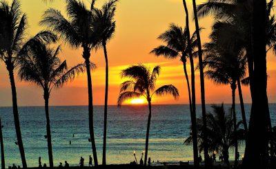 Ingyen utazhatnak Hawaiira azok, akik legalább egy hónapig onnan dolgoznának