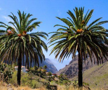 Indíts korábban a nyarat: egy hét Tenerife áprilisban 80.500 Ft-ért!