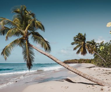 Irány a csodás Karib-tenger: 9 nap Martinique, szállással és repjeggyel: 239.750 Ft-ért!