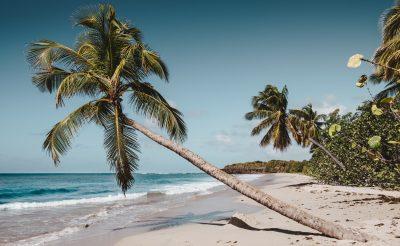 Télből nyárba: Egy hetes karibi nyaralás Martinique-n 205.800 Ft-ért!
