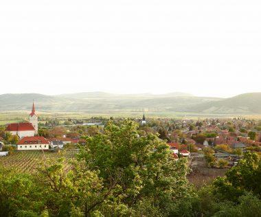 Őszi kikapcsolódás az Oroszlános Borhotelben a tállyai szőlőskertek ölelésében!