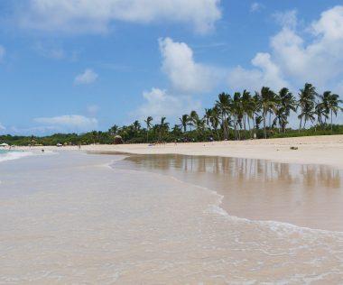 8 nap Dominikán négycsillagos szállással, repjeggyel 244.000 Ft-ért!