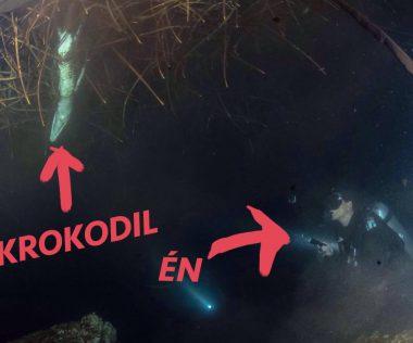 Búvárkodás éjszaka krokodilok között Mexikóban