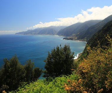 Madeira vs. Tenerife. Segítünk választani!